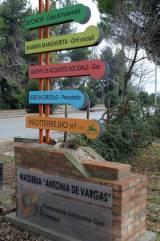 visita Boldrini (2)