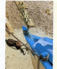 Domenica delle Palme 2009. Una palma benedetta sulla prua di un battello in zona villaggio dei Pescatori
