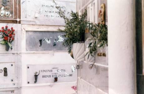 Palme benedette presso loculi nel cimitero