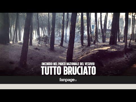 Incendio Vesuvio, restano solo cenere e silenzio