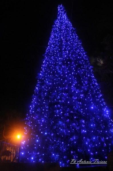 corteo albero manfredonia 01122017 (32)