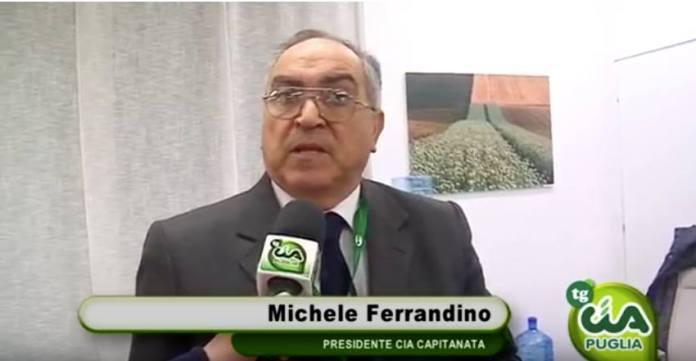 Michele Ferrandino presidente Cia Capitanata