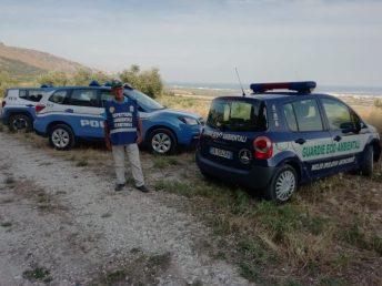 """""""Manfredonia, modello nuovo Fiat """"sventrato"""" ritrovato all'interno di Villa Rosa"""" è bloccato Manfredonia, modello nuovo Fiat """"sventrato"""" ritrovato all'interno di Villa Rosa"""