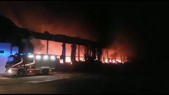 incendio foggia apricena (1)