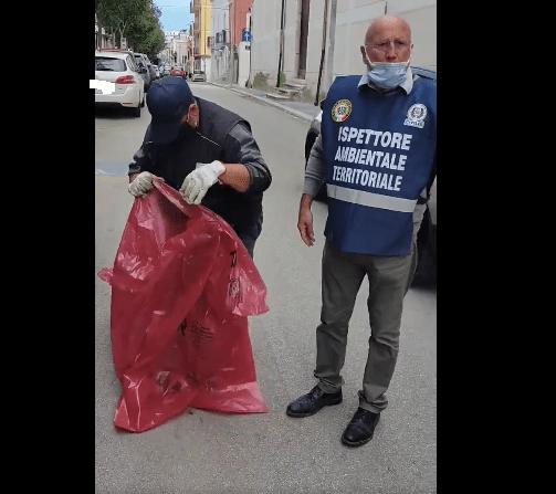 Manfredonia, 28 settembre 2020. Tempestivo intervento degli ispettori ambientali territoriali del Corpo nazionale Civilis Endas, in seguito alla morte di due gatti a Manfredonia.