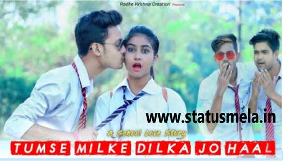 romantic love status tumse milke dil ka haal status video