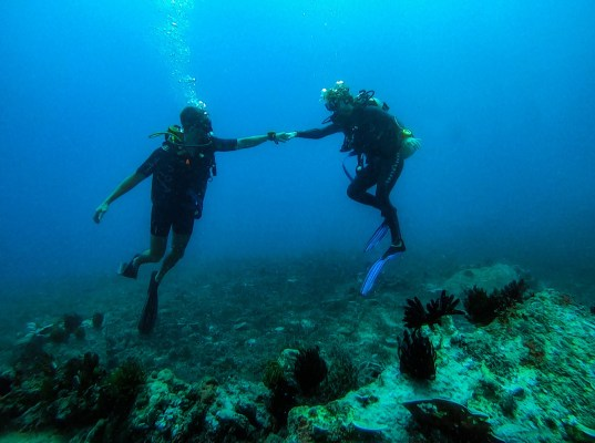 Gili Islands - Indonesia Scuba Diving - Stay Lost