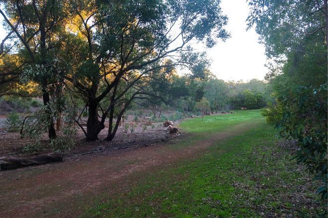 Jorgensen Park - Perth Hiking & Trekking