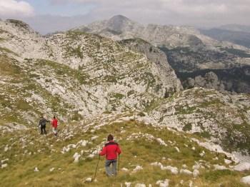 Grebenska tura do Petrovog vrha (ono u daljini)