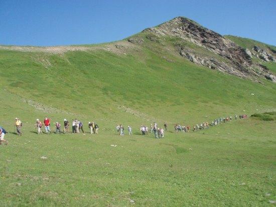 Kolona planinara uživa u pitomim i zelenim površinama Djeravice