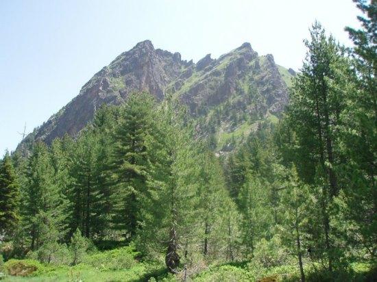 Krš Bogićevica (2374 m), naviši vrh Bogićevice