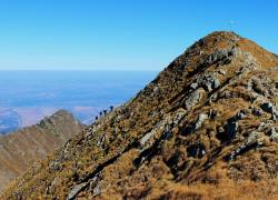 Pred vrhom