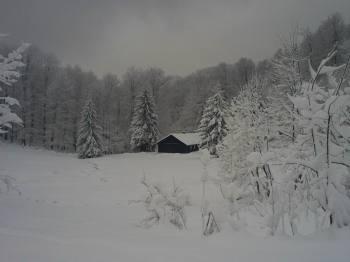 Šumarska kuća u Klekovici