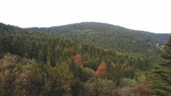 Pogled na vrh Vlaovac sa početka staze