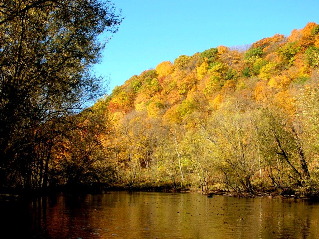 Autumn backwater bluff