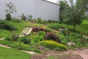 Rain garden in New Richmond, WI