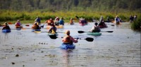 Canoes and kayaks on the upper St. Croix River (Pioneer Press photo)