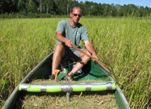 Dr. Anthony Kern harvesting wild rice.