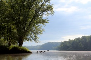 A beautiful view on the St. Croix River