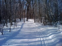 William O'Brien State Park ski trail