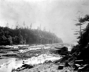 A wannigan amidst logs on the river in the Dalles area late in the logging era