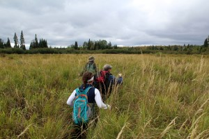 Exploring the beaver ponds – and possible brook trout habitat – of the upper Namekagon River watershed.