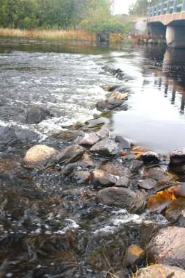 Rocks at Peterson's Bridge, by Greta Maki (age 6), Hayward.