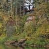 Pine Needles Artists-in-Residencies Announced