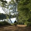 Seeking a Solution for Log House Landing