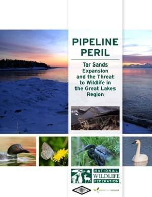 Pipeline Peril cover