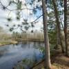 Proposal To End Wisconsin Conservation Program Would Set Back St. Croix Stewardship