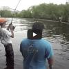 Photos and Video Show Multiple Invasive Carp Caught in Bayport