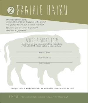 Prairie Haiku from Belwin 's Activity Guide