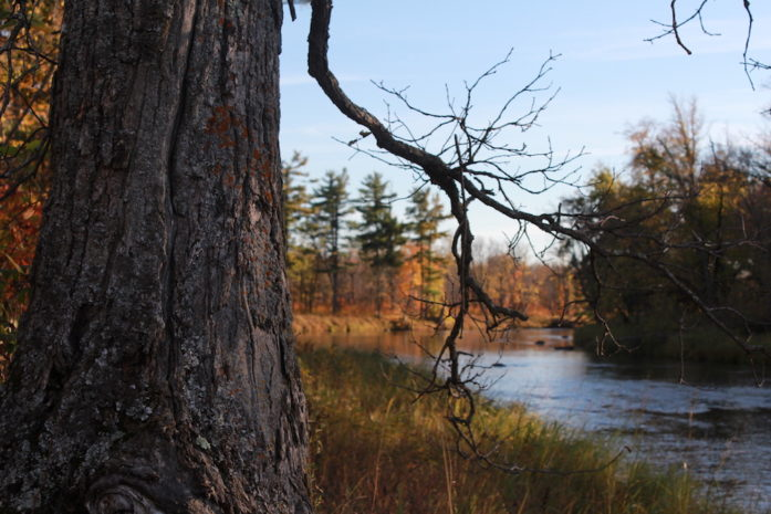 The confluence of the Kettle River and the St. Croix, October 2014 (Photo by Greg Seitz)