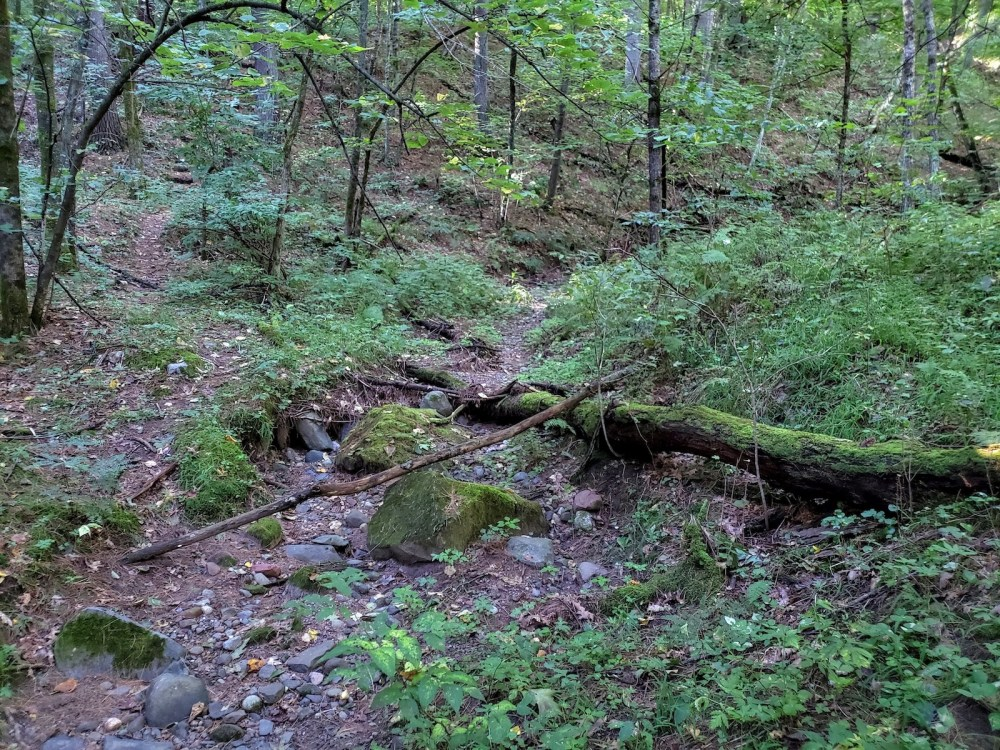 Ephemeral channels like this one along Falls Creek flow only after rain or snowfall, but are important parts of the river systems.