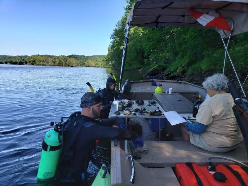 St  Croix Creature Feature: River is refuge for endangered