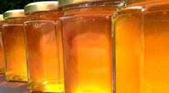 Jars of backlit honey