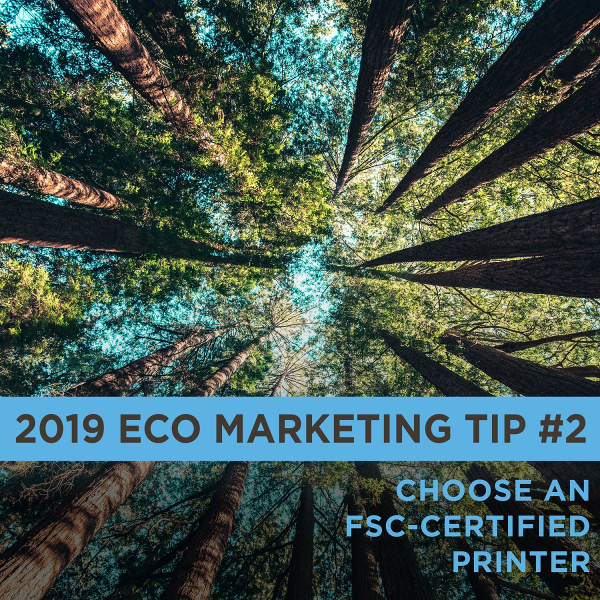 Eco Marketing Tip 2 is to choose an FSC-certified printer