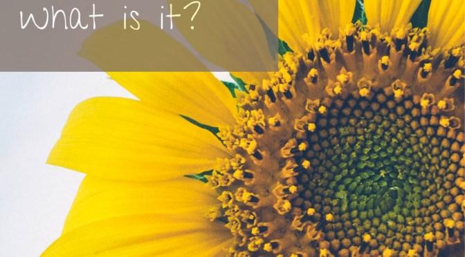 Gaslighting – What is it?
