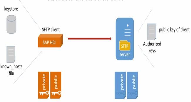 Connecting Sftp Server From Sap Hci Hana Cloud Integration