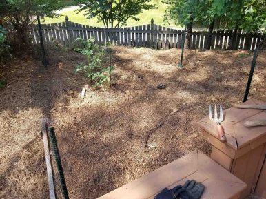 garden-life-ste-do-cli-25