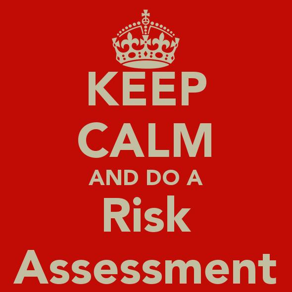 Risk Assessments Steel band steelasophical v