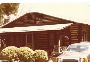 scan log cabin (2)