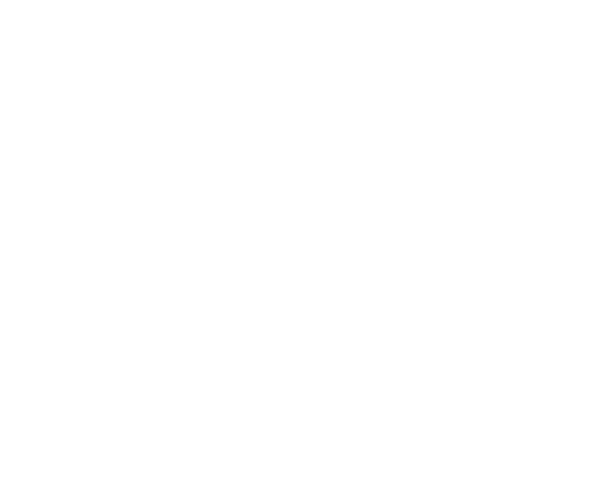 Beef selection from Fairfax VT butcher