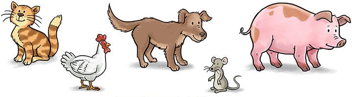 illustration-kinderapp-conni-englisch-bauernhof-tiere