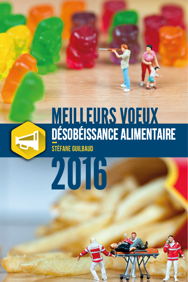 sgvoeux2016