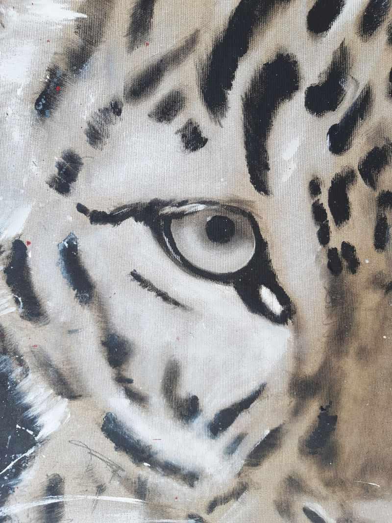 Detail Auge Leopard