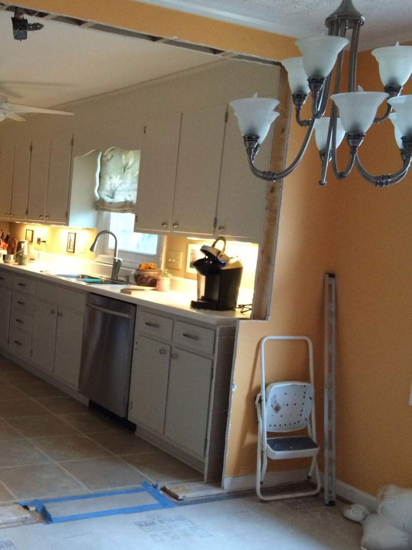 Kitchen Renovation In Progress kitchen renovation - stefan morikawa, llc