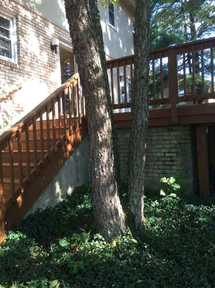 Deck Refinishing, Blacksburg, Virginia, by Stefan Morikawa, LLC