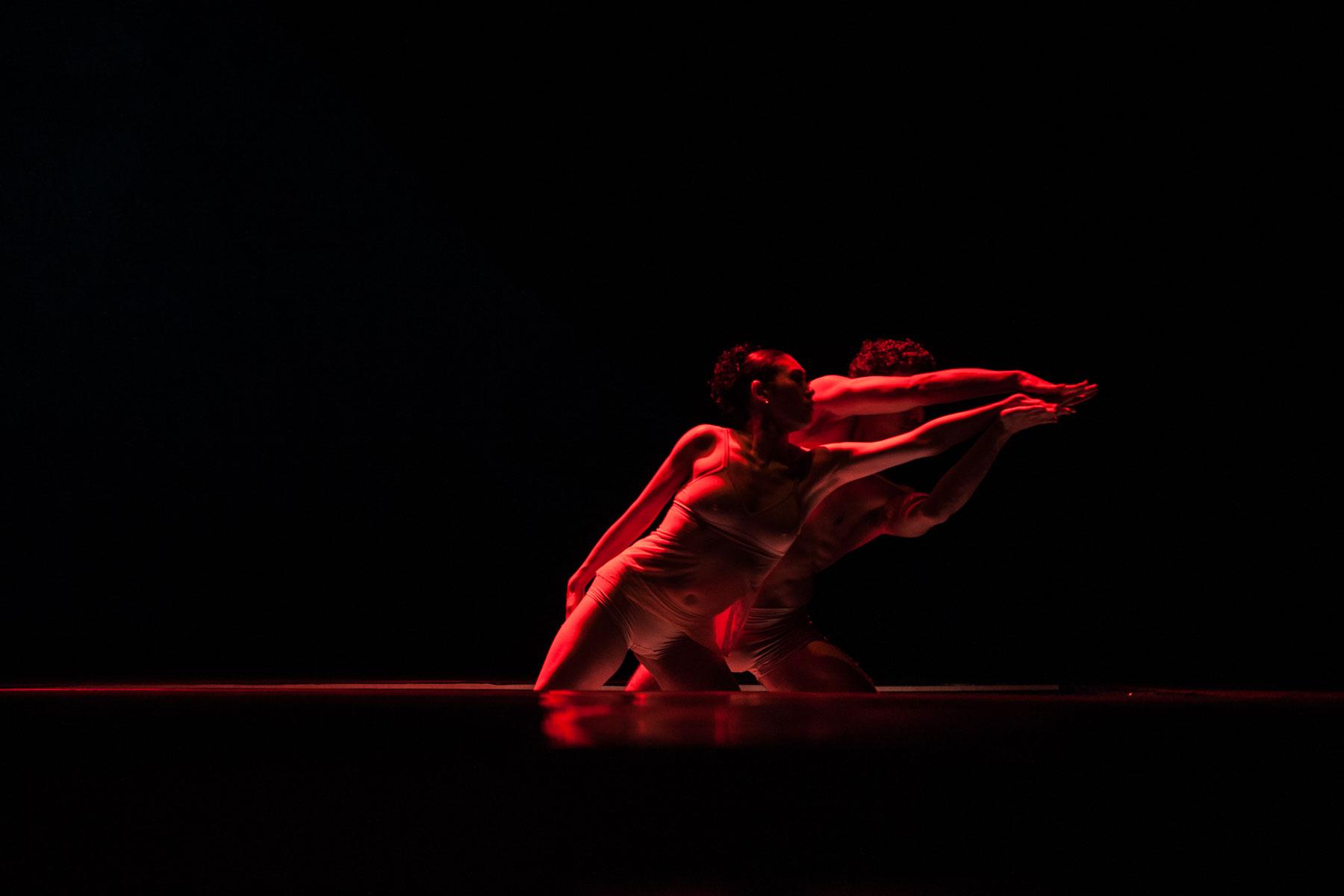Levi_Ballet_8071